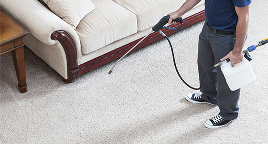 Residential Cleaning Services Carpet Cleaning Stoll Rug